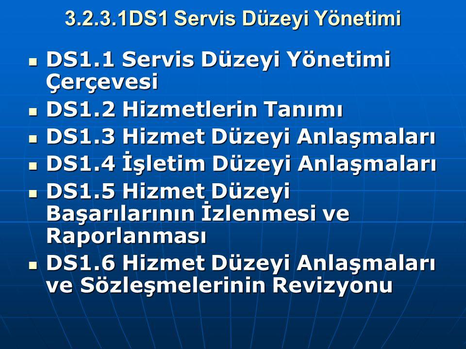 3.2.3.1DS1 Servis Düzeyi Yönetimi DS1.1 Servis Düzeyi Yönetimi Çerçevesi DS1.1 Servis Düzeyi Yönetimi Çerçevesi DS1.2 Hizmetlerin Tanımı DS1.2 Hizmetl