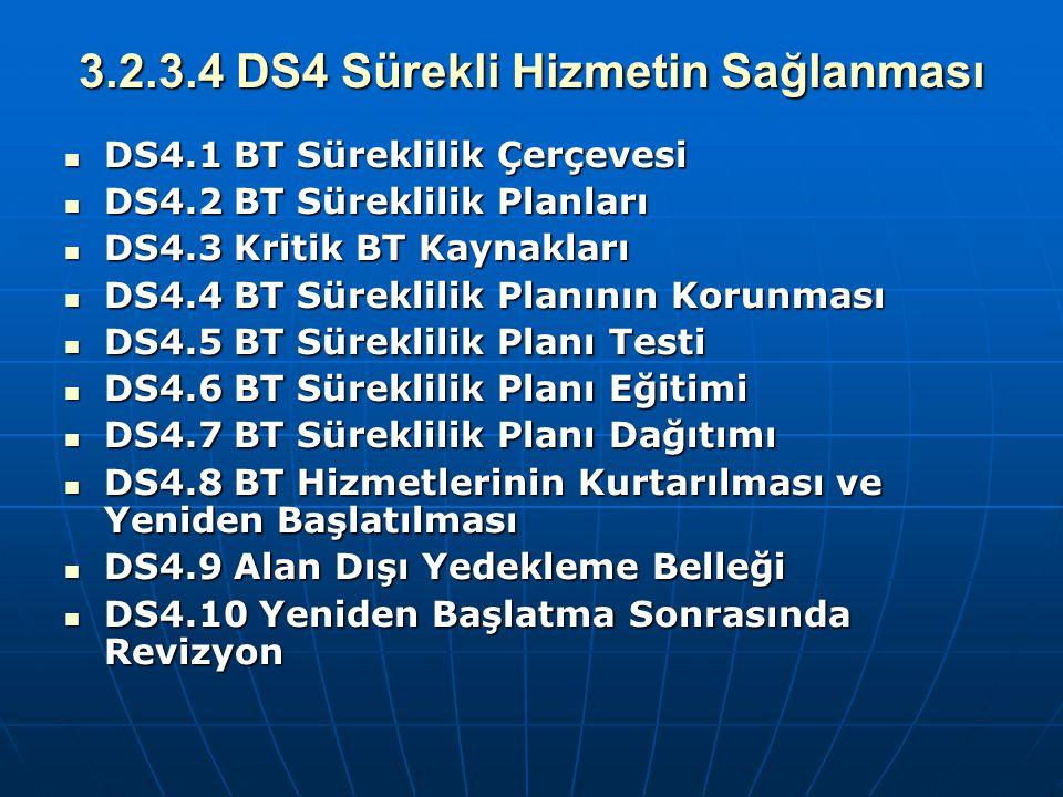 3.2.3.4 DS4 Sürekli Hizmetin Sağlanması DS4.1 BT Süreklilik Çerçevesi DS4.1 BT Süreklilik Çerçevesi DS4.2 BT Süreklilik Planları DS4.2 BT Süreklilik P