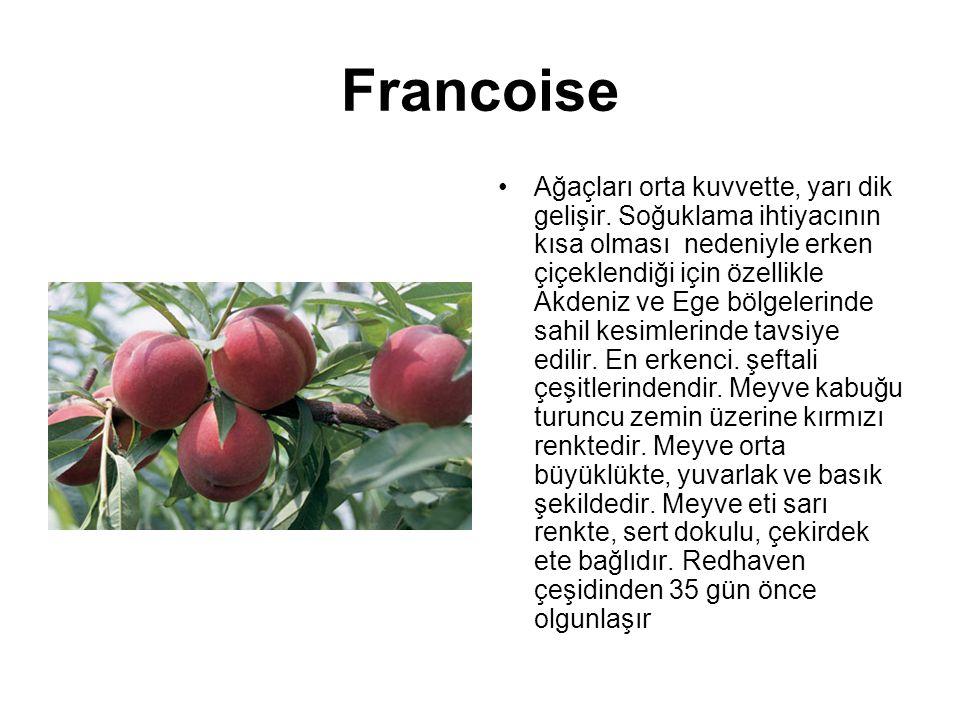 Francoise Ağaçları orta kuvvette, yarı dik gelişir. Soğuklama ihtiyacının kısa olması nedeniyle erken çiçeklendiği için özellikle Akdeniz ve Ege bölge