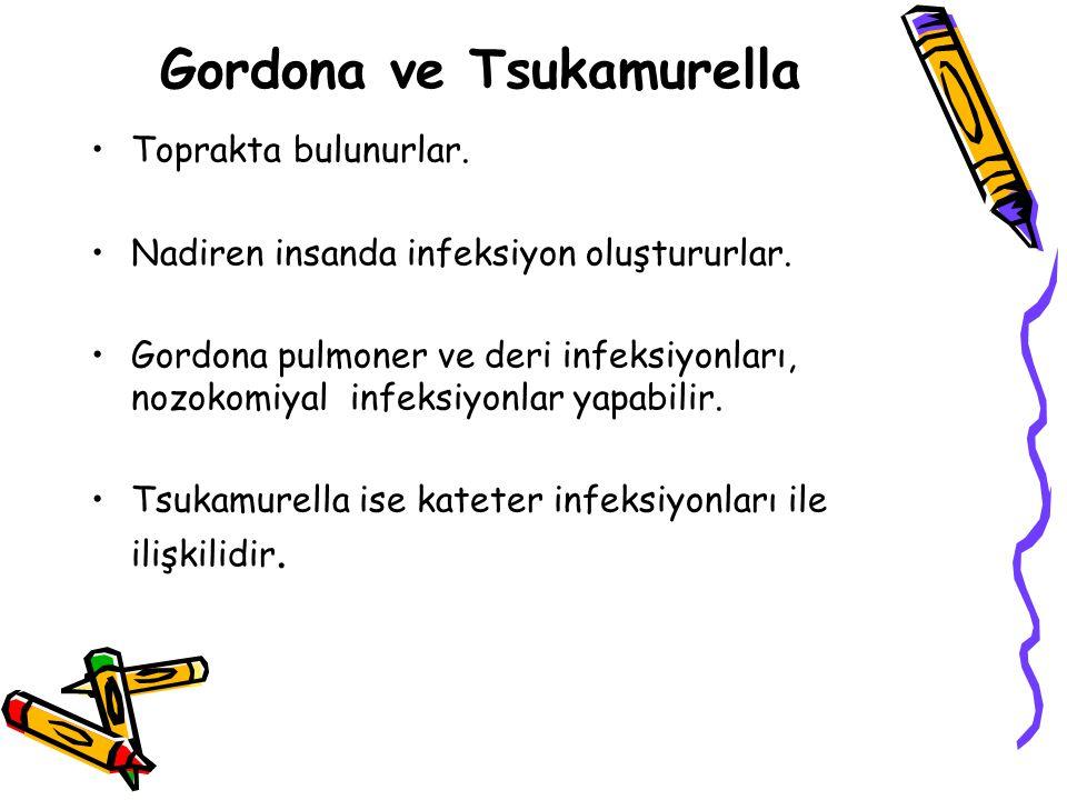 Gordona ve Tsukamurella Toprakta bulunurlar.Nadiren insanda infeksiyon oluştururlar.