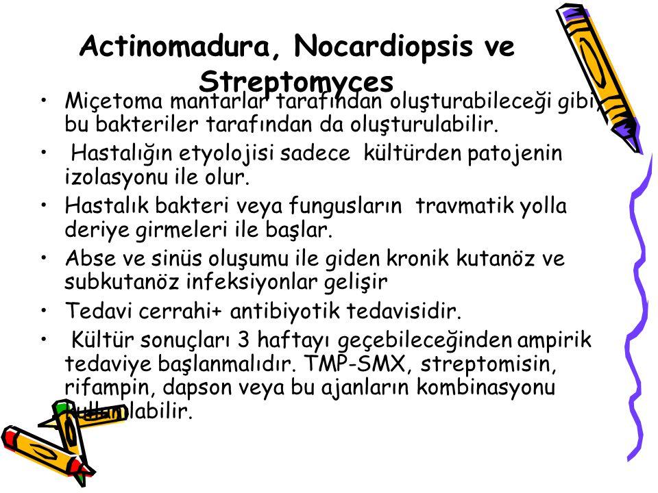 Actinomadura, Nocardiopsis ve Streptomyces Miçetoma mantarlar tarafından oluşturabileceği gibi, bu bakteriler tarafından da oluşturulabilir.