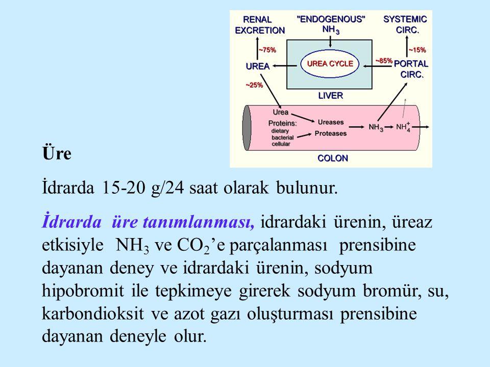 Üre İdrarda 15-20 g/24 saat olarak bulunur. İdrarda üre tanımlanması, idrardaki ürenin, üreaz etkisiyle NH 3 ve CO 2 'e parçalanması prensibine dayana