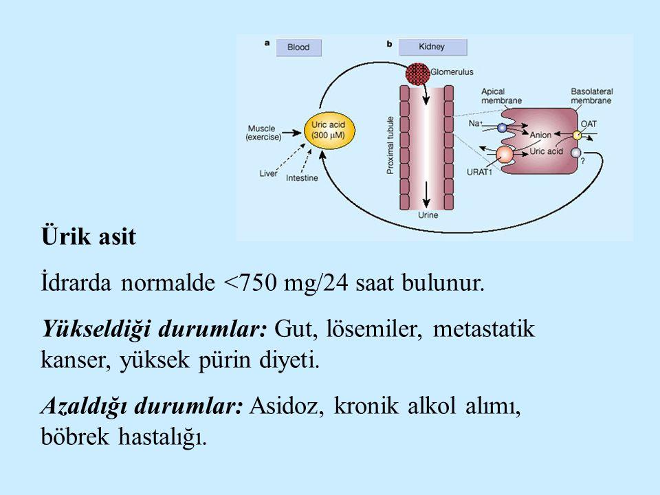 Ürik asit İdrarda normalde <750 mg/24 saat bulunur. Yükseldiği durumlar: Gut, lösemiler, metastatik kanser, yüksek pürin diyeti. Azaldığı durumlar: As