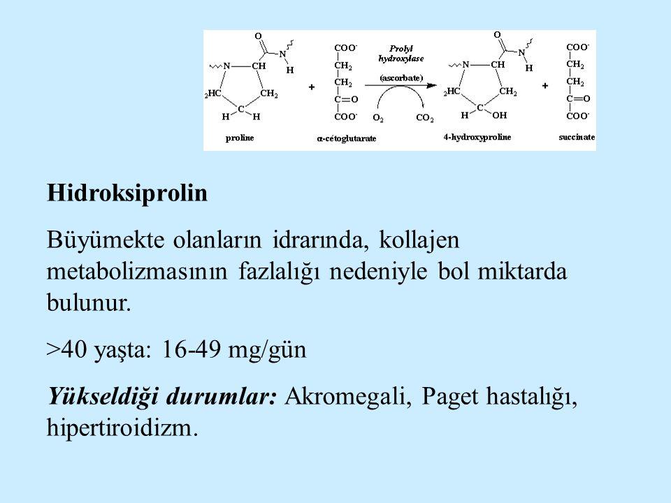 Hidroksiprolin Büyümekte olanların idrarında, kollajen metabolizmasının fazlalığı nedeniyle bol miktarda bulunur. >40 yaşta: 16-49 mg/gün Yükseldiği d