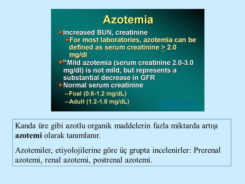 Kanda üre gibi azotlu organik maddelerin fazla miktarda artışı azotemi olarak tanımlanır. Azotemiler, etiyolojilerine göre üç grupta incelenirler: Pre
