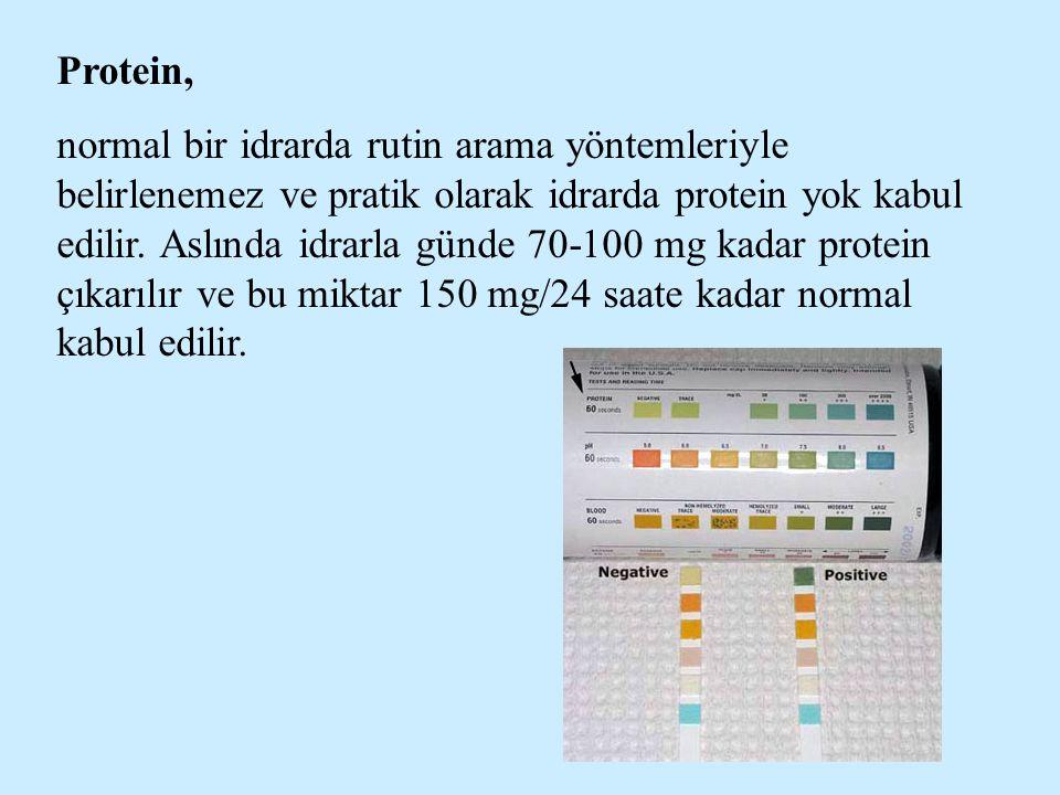 Protein, normal bir idrarda rutin arama yöntemleriyle belirlenemez ve pratik olarak idrarda protein yok kabul edilir. Aslında idrarla günde 70-100 mg
