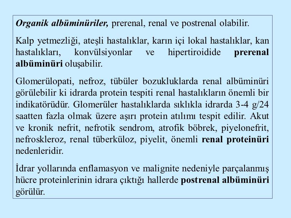 Organik albüminüriler, prerenal, renal ve postrenal olabilir. Kalp yetmezliği, ateşli hastalıklar, karın içi lokal hastalıklar, kan hastalıkları, konv
