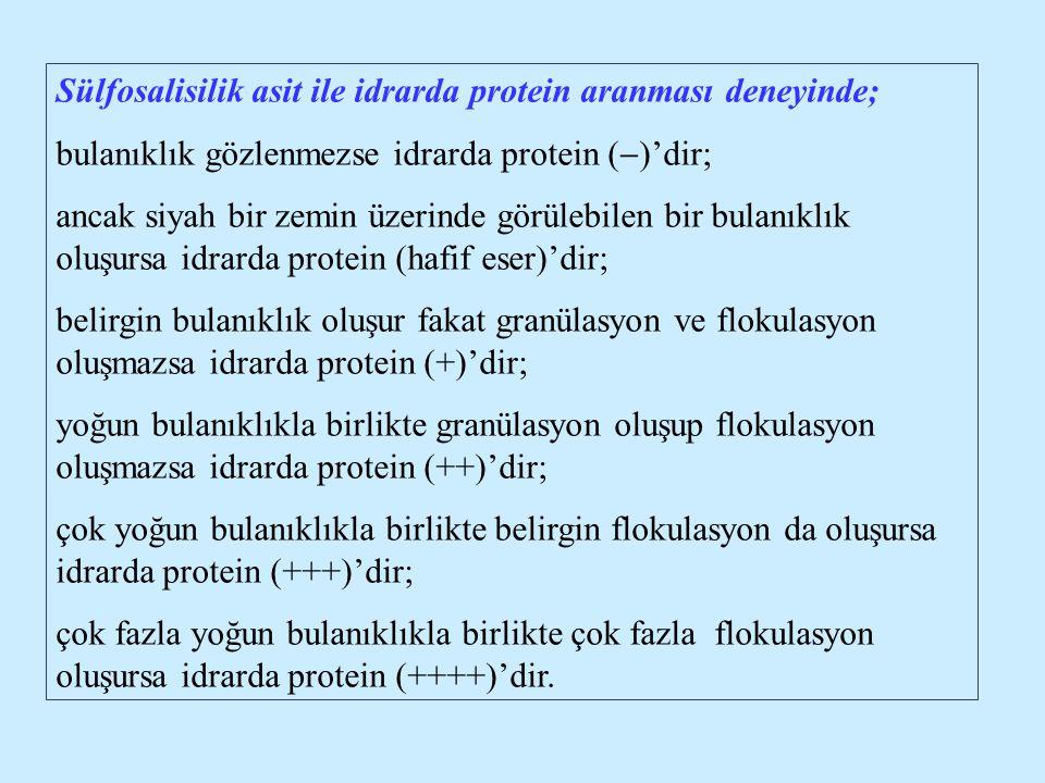 Sülfosalisilik asit ile idrarda protein aranması deneyinde; bulanıklık gözlenmezse idrarda protein (  )'dir; ancak siyah bir zemin üzerinde görülebil
