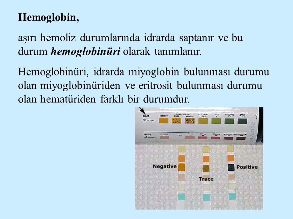 Hemoglobin, aşırı hemoliz durumlarında idrarda saptanır ve bu durum hemoglobinüri olarak tanımlanır. Hemoglobinüri, idrarda miyoglobin bulunması durum
