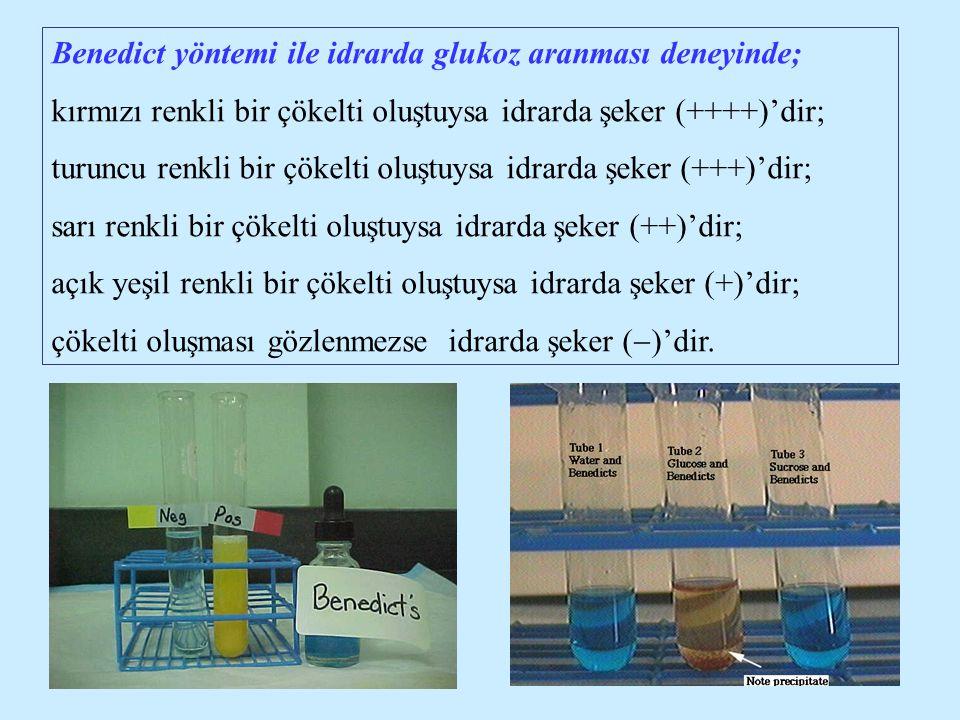 Benedict yöntemi ile idrarda glukoz aranması deneyinde; kırmızı renkli bir çökelti oluştuysa idrarda şeker (++++)'dir; turuncu renkli bir çökelti oluş