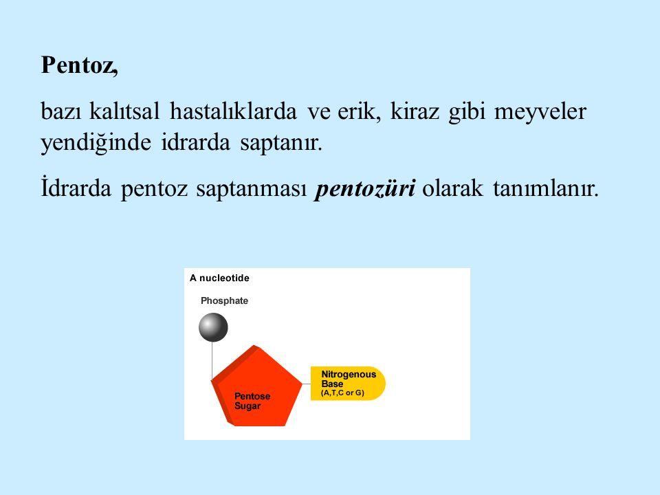 Pentoz, bazı kalıtsal hastalıklarda ve erik, kiraz gibi meyveler yendiğinde idrarda saptanır. İdrarda pentoz saptanması pentozüri olarak tanımlanır.