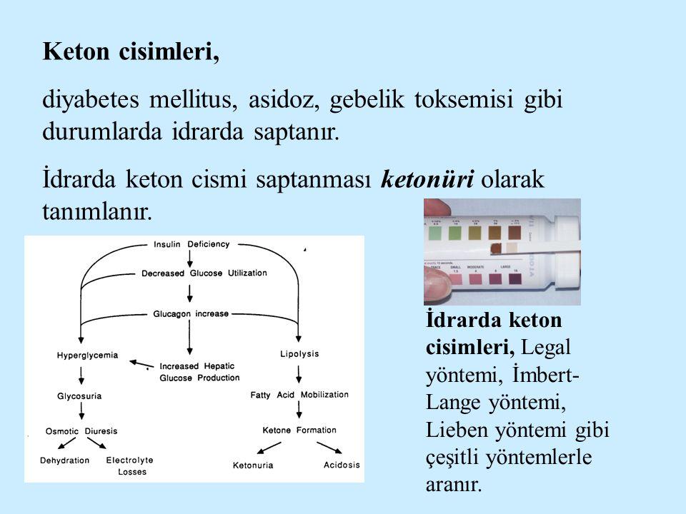 Keton cisimleri, diyabetes mellitus, asidoz, gebelik toksemisi gibi durumlarda idrarda saptanır. İdrarda keton cismi saptanması ketonüri olarak tanıml