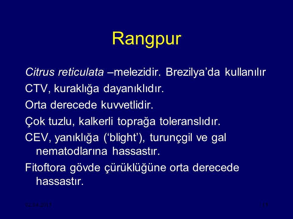 02.04.201515 Rangpur Citrus reticulata –melezidir.
