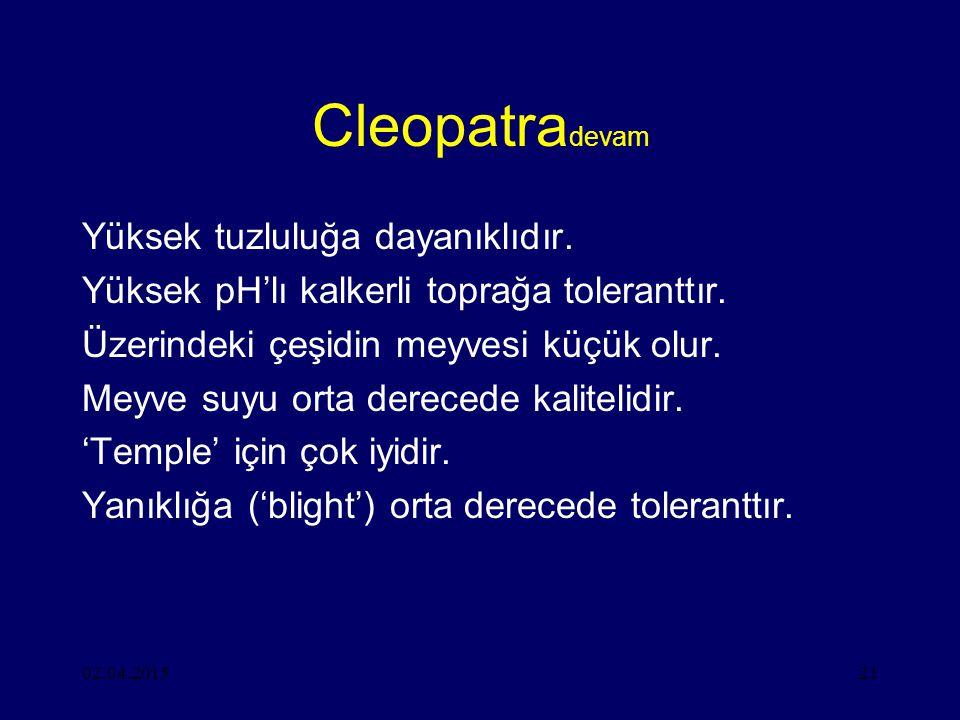 02.04.201521 Cleopatra devam Yüksek tuzluluğa dayanıklıdır.
