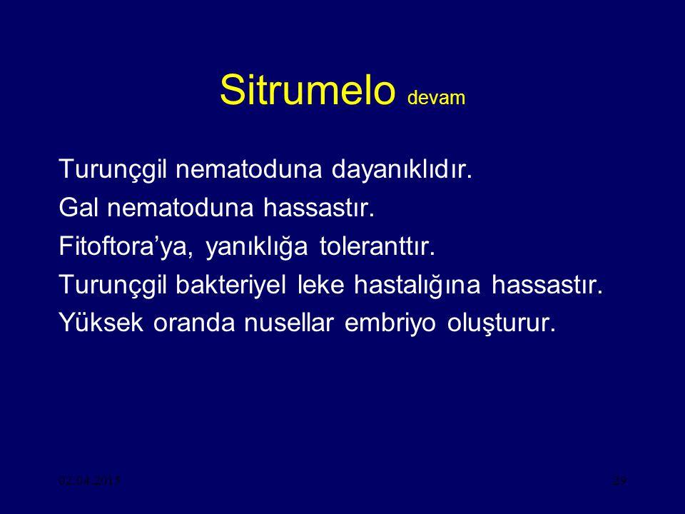 02.04.201529 Sitrumelo devam Turunçgil nematoduna dayanıklıdır.