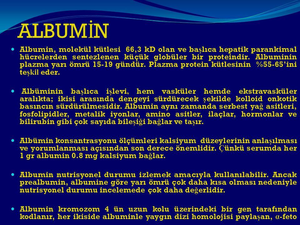 ALBUM İ N Albumin, molekül kütlesi 66,3 kD olan ve ba ş lıca hepatik parankimal hücrelerden sentezlenen küçük globüler bir proteindir. Albuminin plazm