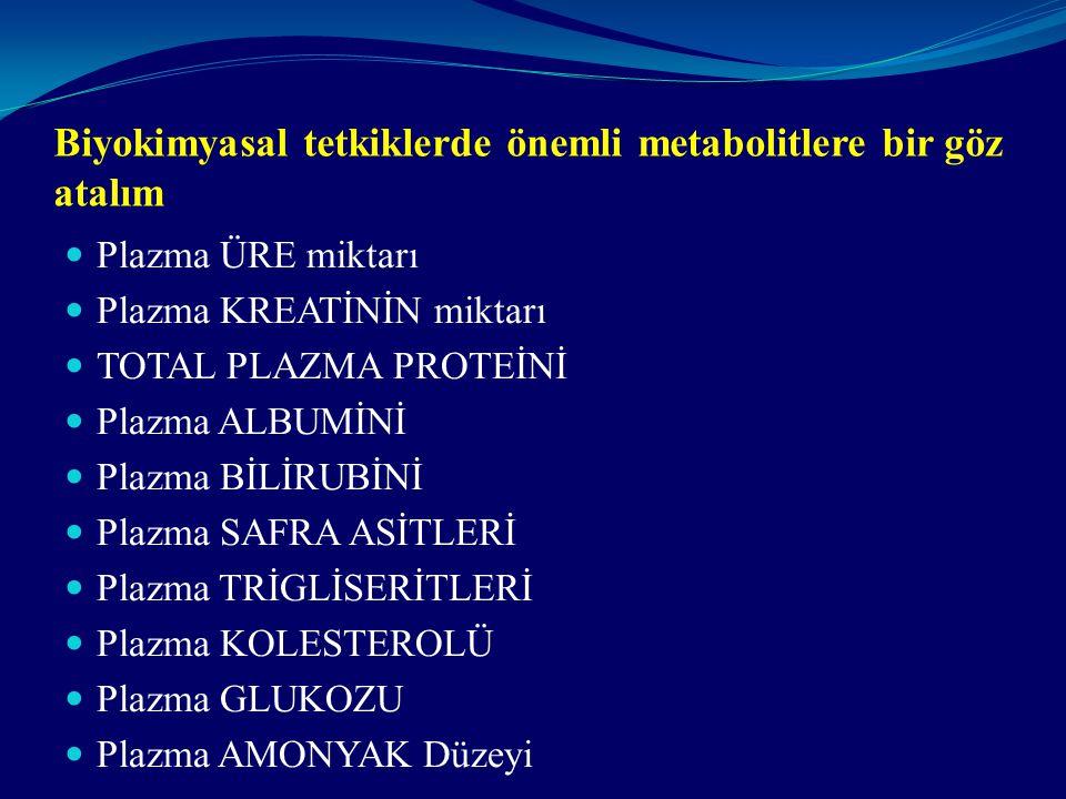 Biyokimyasal tetkiklerde önemli metabolitlere bir göz atalım Plazma ÜRE miktarı Plazma KREATİNİN miktarı TOTAL PLAZMA PROTEİNİ Plazma ALBUMİNİ Plazma