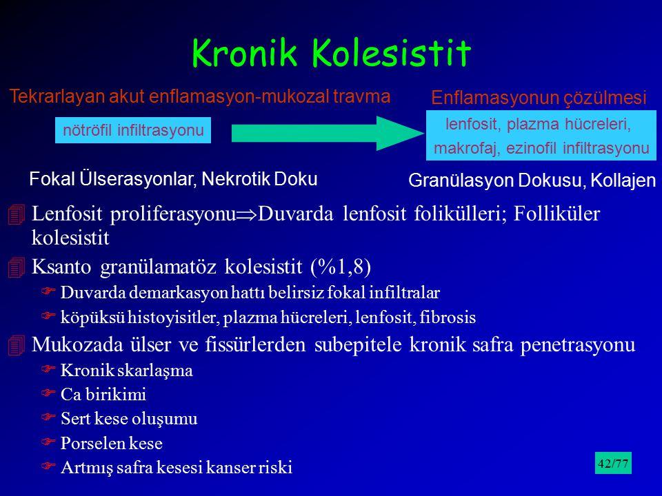 Kronik Kolesistit Tekrarlayan akut enflamasyon-mukozal travma lenfosit, plazma hücreleri, makrofaj, ezinofil infiltrasyonu nötröfil infiltrasyonu Enfl