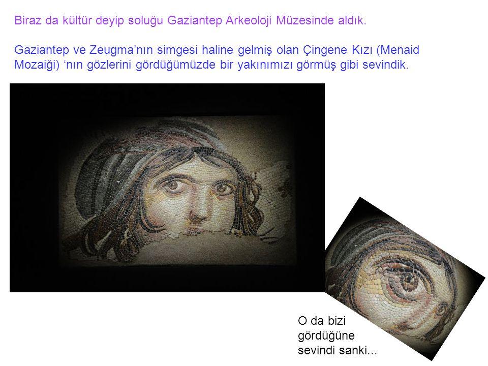 Biraz da kültür deyip soluğu Gaziantep Arkeoloji Müzesinde aldık. Gaziantep ve Zeugma'nın simgesi haline gelmiş olan Çingene Kızı (Menaid Mozaiği) 'nı