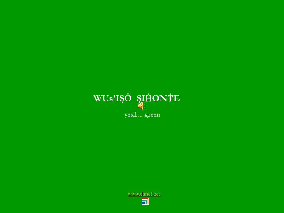 www.danef.net WUŚIŞÖ ĆAPŠ koyu yeşil... darkgreen