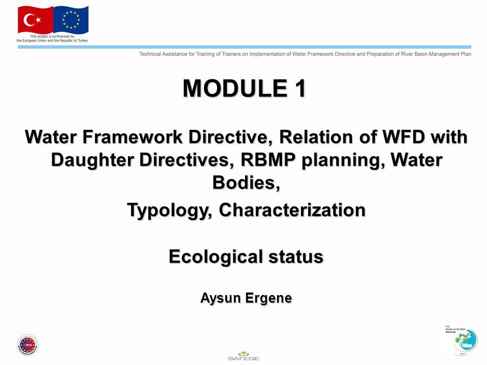Ecological status Ekolojik Durum Arka plan konsantrasyonu: Bir maddenin, insan faaliyetleri sonucu bozulmamış veya ihmal edilebilir ölçüde bozulmuş su kütlesindeki konsantrasyonunu