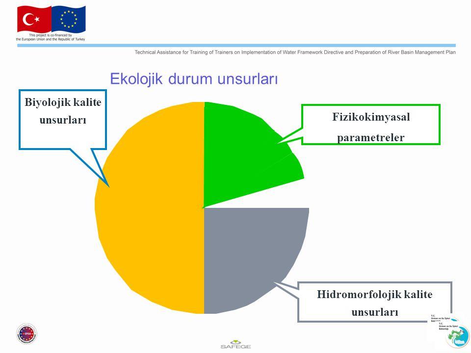 Ekolojik durum unsurları Biyolojik kalite unsurları Hidromorfolojik kalite unsurları Fizikokimyasal parametreler
