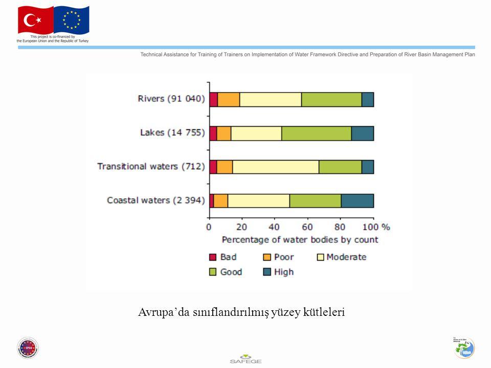 Avrupa'da sınıflandırılmış yüzey kütleleri