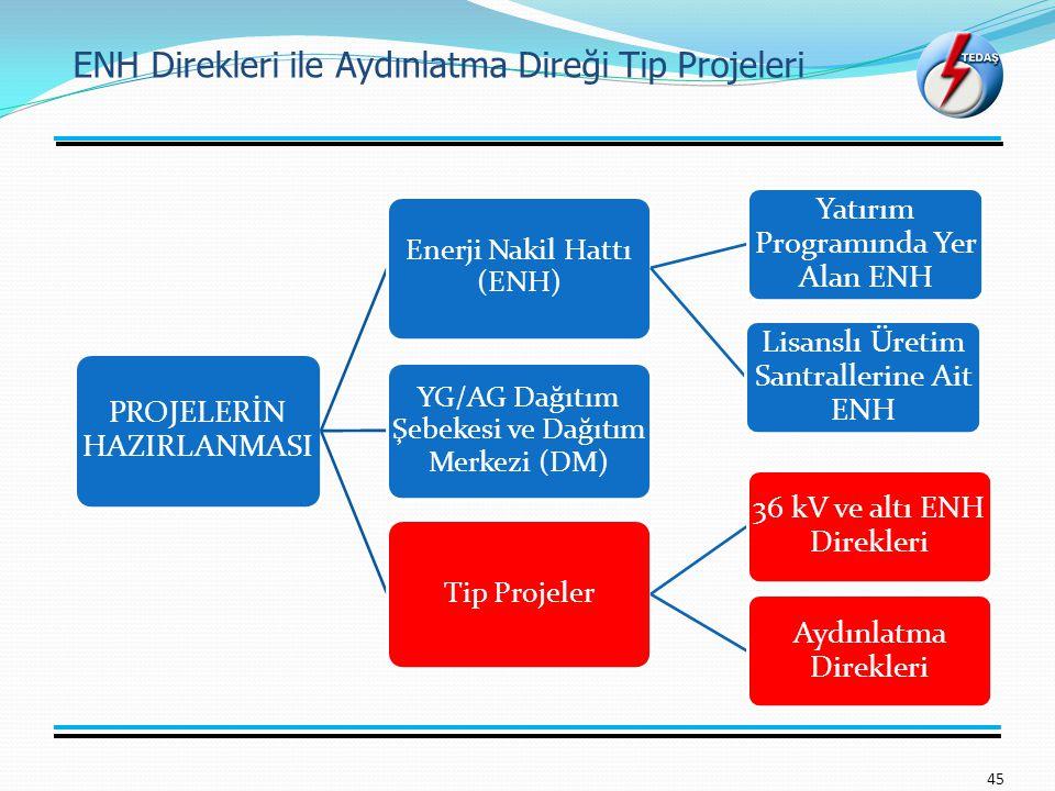 ENH Direkleri ile Aydınlatma Direği Tip Projeleri 45 PROJELERİN HAZIRLANMASI Enerji Nakil Hattı (ENH) Yatırım Programında Yer Alan ENH Lisanslı Üretim