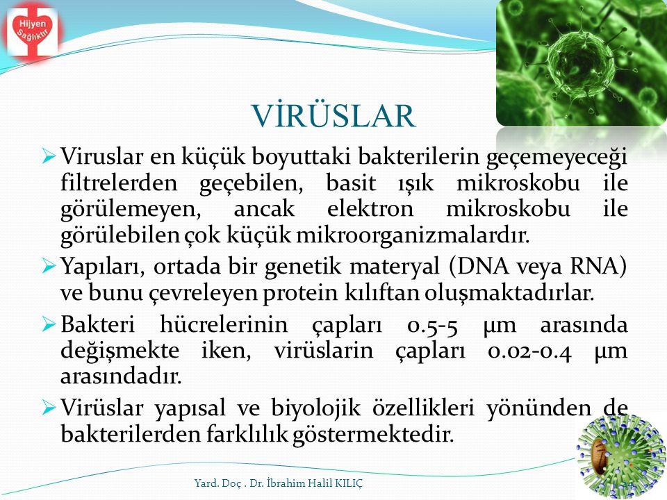 VİRÜSLAR  Viruslar en küçük boyuttaki bakterilerin geçemeyeceği filtrelerden geçebilen, basit ışık mikroskobu ile görülemeyen, ancak elektron mikrosk