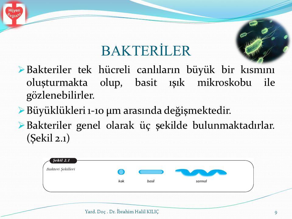 Dış Faktörler Yard. Doç. Dr. İbrahim Halil KILIÇ60