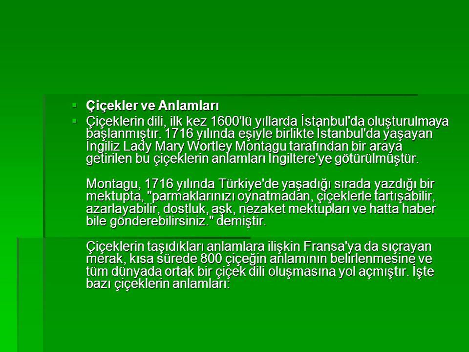  Çiçekler ve Anlamları  Çiçeklerin dili, ilk kez 1600'lü yıllarda İstanbul'da oluşturulmaya başlanmıştır. 1716 yılında eşiyle birlikte İstanbul'da y