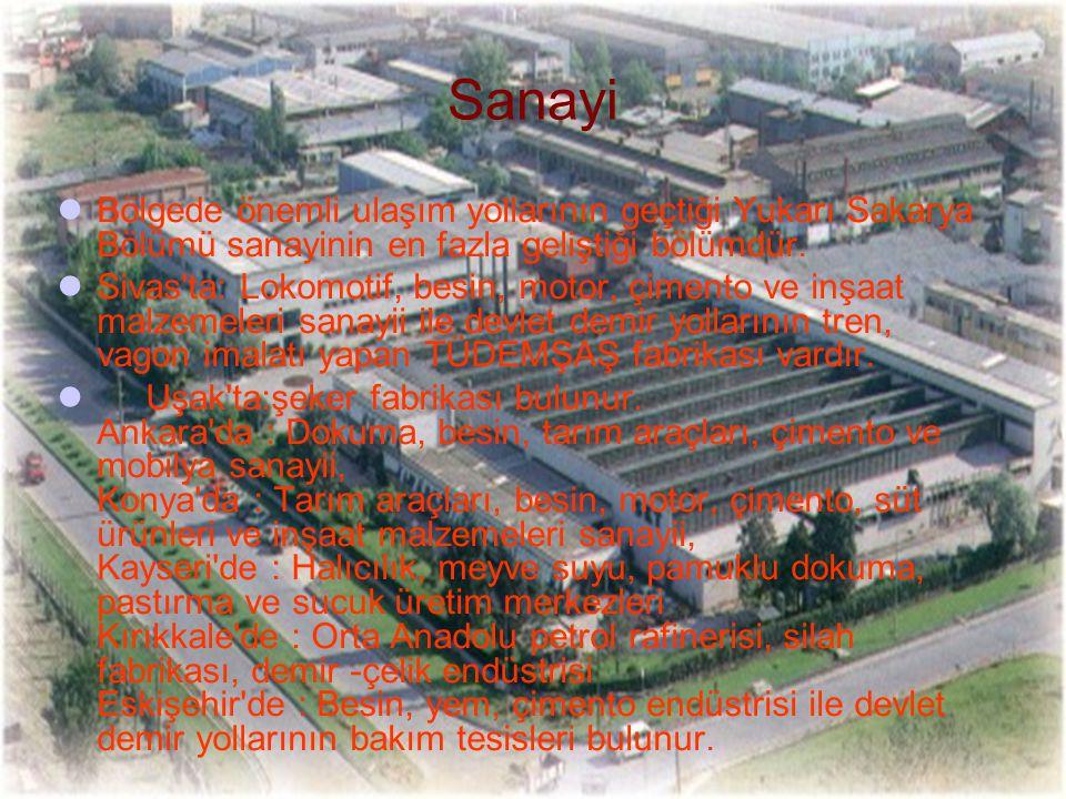Bölgede önemli ulaşım yollarının geçtiği Yukarı Sakarya Bölümü sanayinin en fazla geliştiği bölümdür. Sivas'ta: Lokomotif, besin, motor, çimento ve in