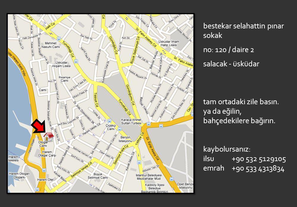 bestekar selahattin pınar sokak no: 120 / daire 2 salacak - üsküdar tam ortadaki zile basın.