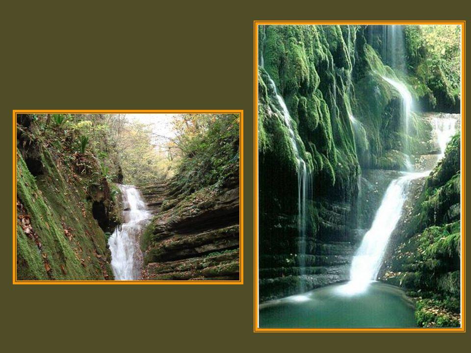 Tatlıca Şelaleleri Ayancık ile Erfelek arasında uzanan bir vadide yer alıyor … Uçurumdan uçuruma akan, köpüklü suların oluşturduğu 30 a yakın şelaleyi saklayan vadide ilerlerken;Kayın, ıhlamur ve meşelerin göğü hapsettiği bir ormanda, sararan yaprakların suyla muhteşem dansını izliyorsunuz… TATLICAŞELALELERİ