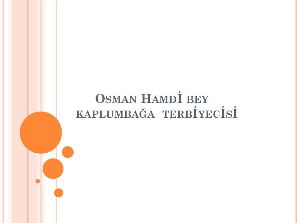 O SMAN H AMDI BEY Doğumu1842 Ölümü 24 Şubat24 Şubat 1910 İstanbul, Osmanlı Devleti1910 İstanbulOsmanlı Devleti MilliyetiOsmanlı AlanıResimResim, Arkeoloji, MüzecilikArkeolojiMüzecilik EğitimiHukuk, Resim Meşhur eserleri Kaplumbağa Terbiyecisi