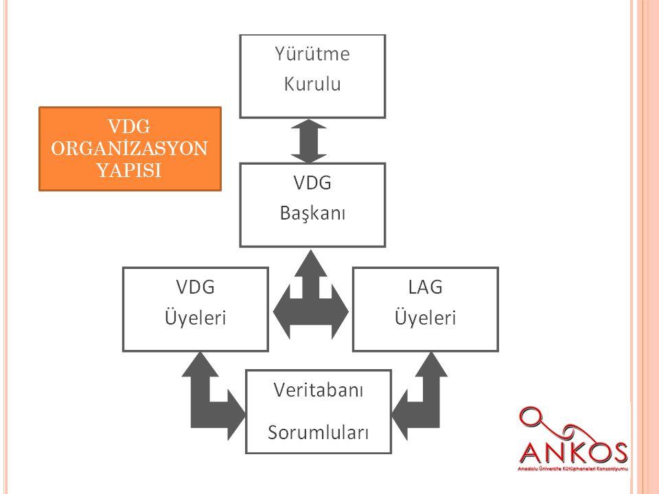VDG ORGANİZASYON YAPISI