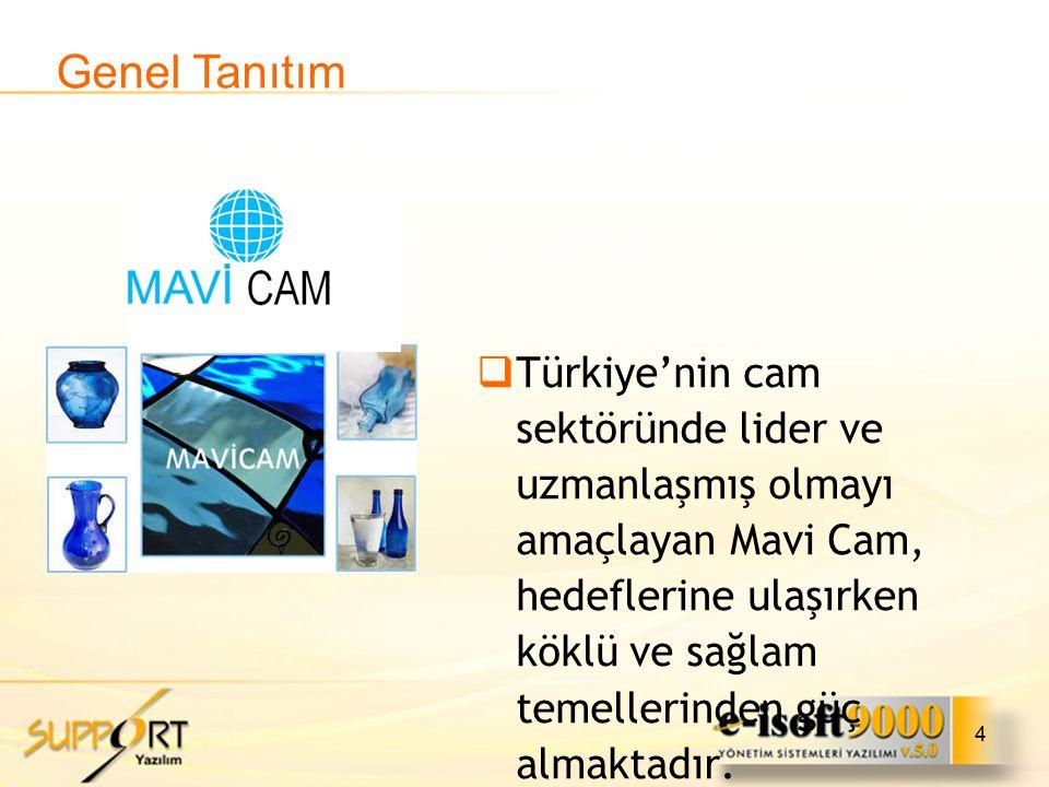 4  Türkiye'nin cam sektöründe lider ve uzmanlaşmış olmayı amaçlayan Mavi Cam, hedeflerine ulaşırken köklü ve sağlam temellerinden güç almaktadır. Gen