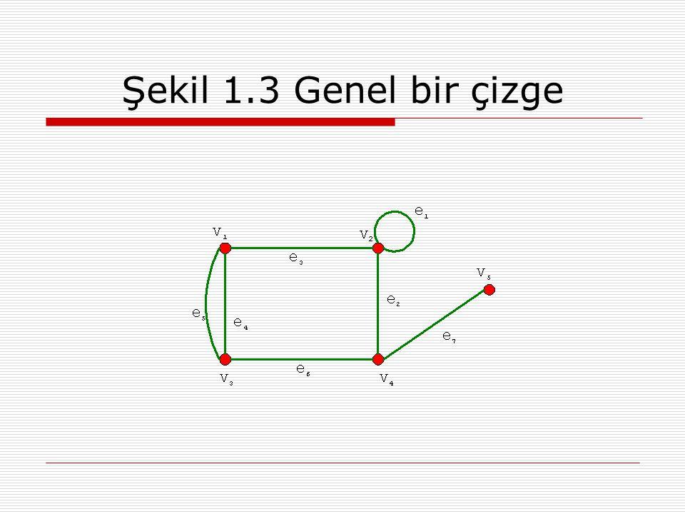 Şekil 1.3 Genel bir çizge