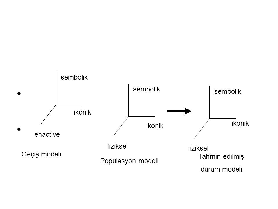 sembolik enactive ikonik sembolik fiziksel sembolik fiziksel sembolik ikonik Geçiş modeli Populasyon modeli Tahmin edilmiş durum modeli
