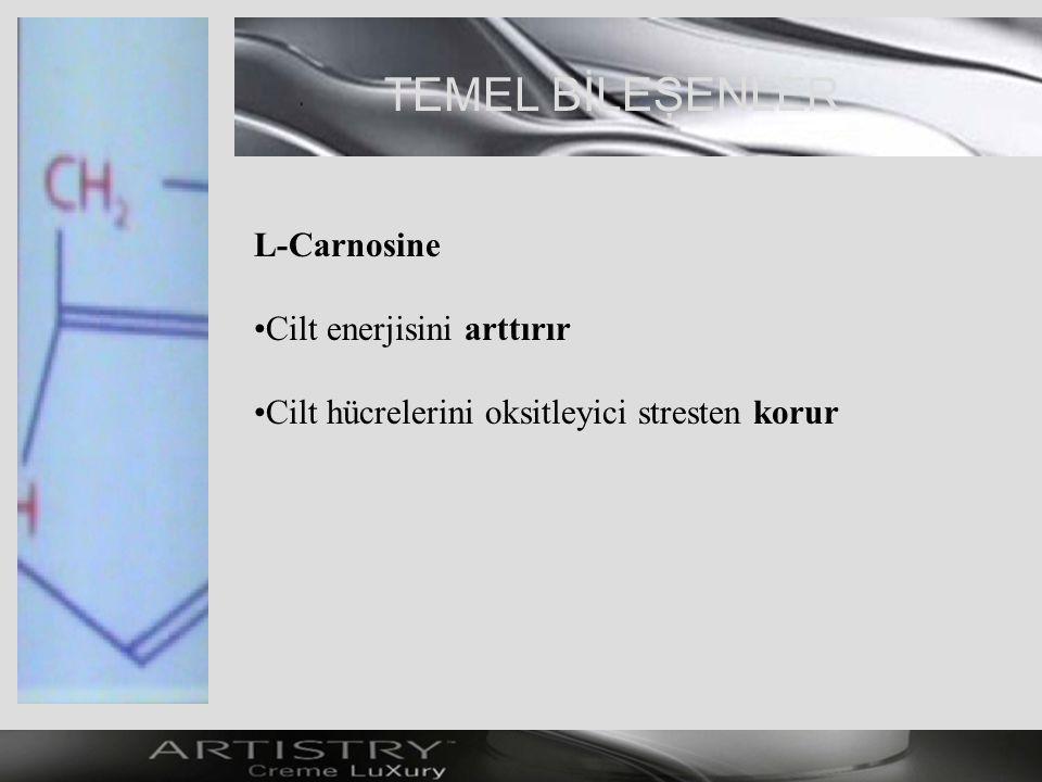 TEMEL BİLEŞENLER L-Carnosine Cilt enerjisini arttırır Cilt hücrelerini oksitleyici stresten korur