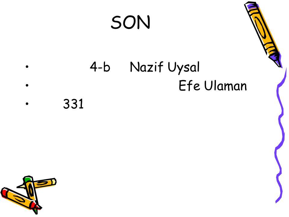 SON 4-b Nazif Uysal Efe Ulaman 331