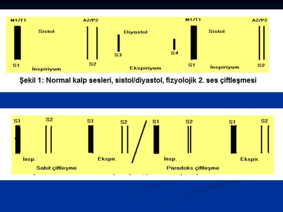 Sistolde duyulan ek sesler Ejeksiyon sesleri: aort ve pulmoner kapak darlıklarında duyulan açılma sesleridir Ejeksiyon sesleri: aort ve pulmoner kapak darlıklarında duyulan açılma sesleridir Midsistolik klik: MVP yada TVP da sistol sırasında kapağın gerilmesiyle ortaya çıkar Midsistolik klik: MVP yada TVP da sistol sırasında kapağın gerilmesiyle ortaya çıkar Frotman: perikardiyal sürtünme sesidir.