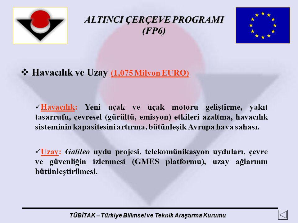 ALTINCI ÇERÇEVE PROGRAMI (FP6) TÜBİTAK – Türkiye Bilimsel ve Teknik Araştırma Kurumu  Havacılık ve Uzay (1,075 Milyon EURO) Havacılık: Yeni uçak ve u
