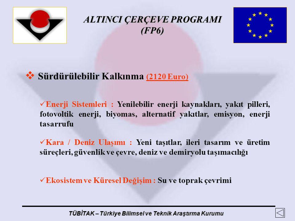 ALTINCI ÇERÇEVE PROGRAMI (FP6) TÜBİTAK – Türkiye Bilimsel ve Teknik Araştırma Kurumu  Sürdürülebilir Kalkınma (2120 Euro) Enerji Sistemleri : Yenileb