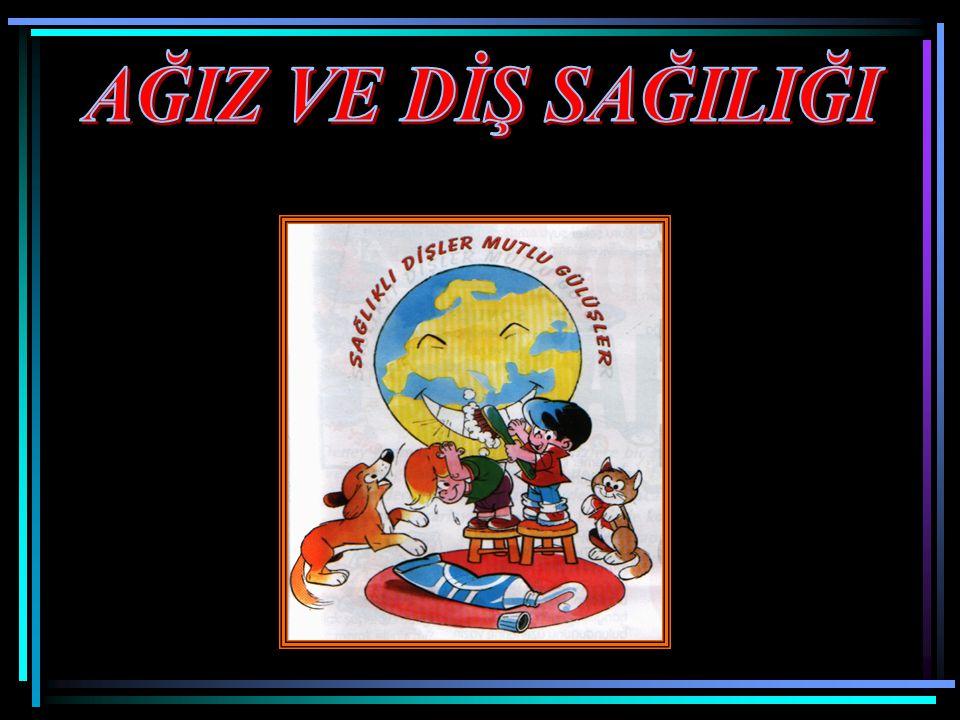 Türkiye'de bilimsel diş hekimliği 22 Kasım 1908'de Halit SANİ Bey'in öncülüğünde İstanbul Tıp Fakültesine bağlı olarak kurulan dişçi mektebinin kuruluş yıl dönümlerinde kutlanmaktadır.