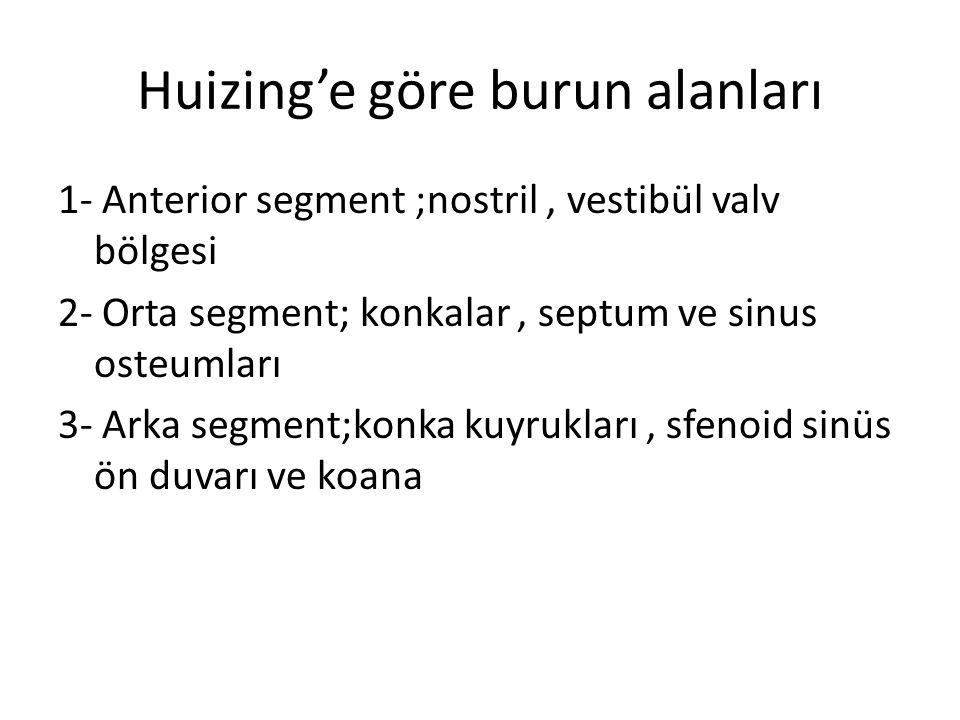 Huizing'e göre burun alanları 1- Anterior segment ;nostril, vestibül valv bölgesi 2- Orta segment; konkalar, septum ve sinus osteumları 3- Arka segmen