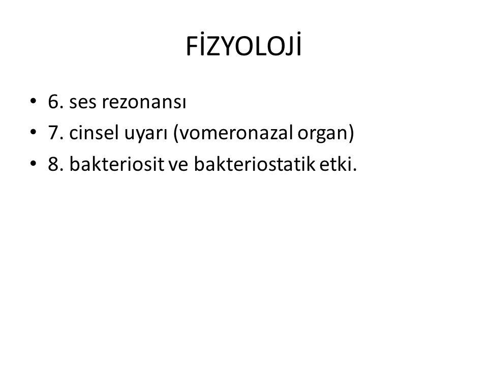 FİZYOLOJİ 6. ses rezonansı 7. cinsel uyarı (vomeronazal organ) 8. bakteriosit ve bakteriostatik etki.