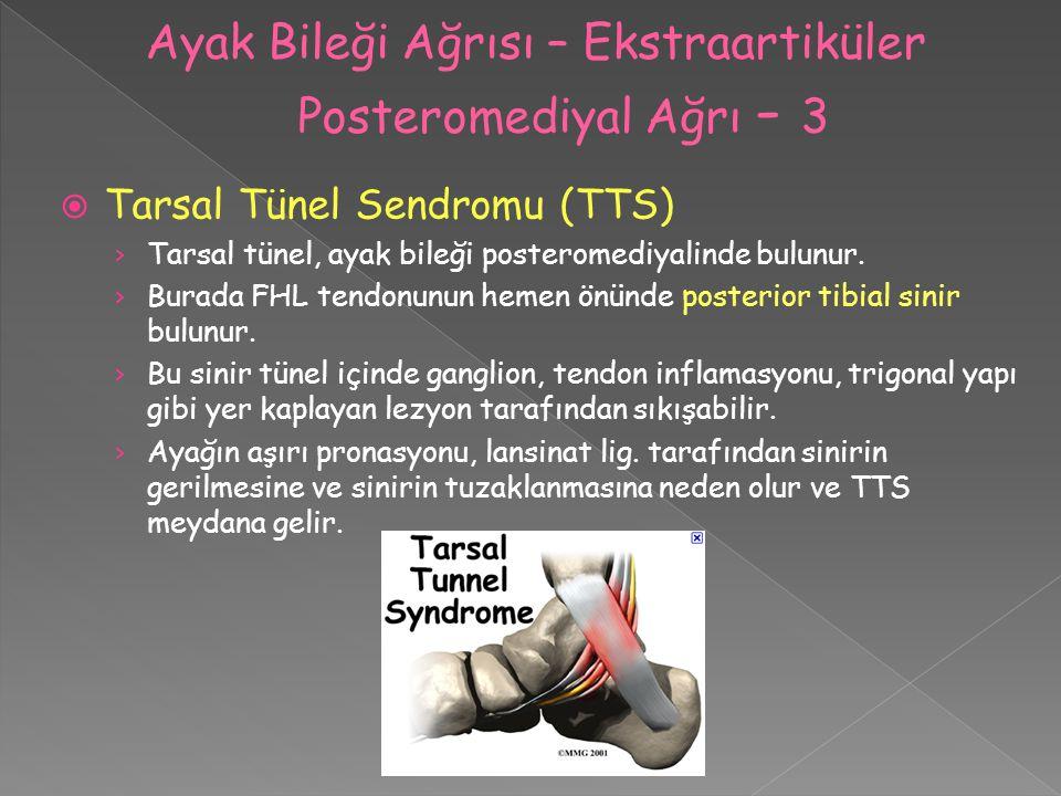  Tarsal Tünel Sendromu (TTS) › Tarsal tünel, ayak bileği posteromediyalinde bulunur. › Burada FHL tendonunun hemen önünde posterior tibial sinir bulu