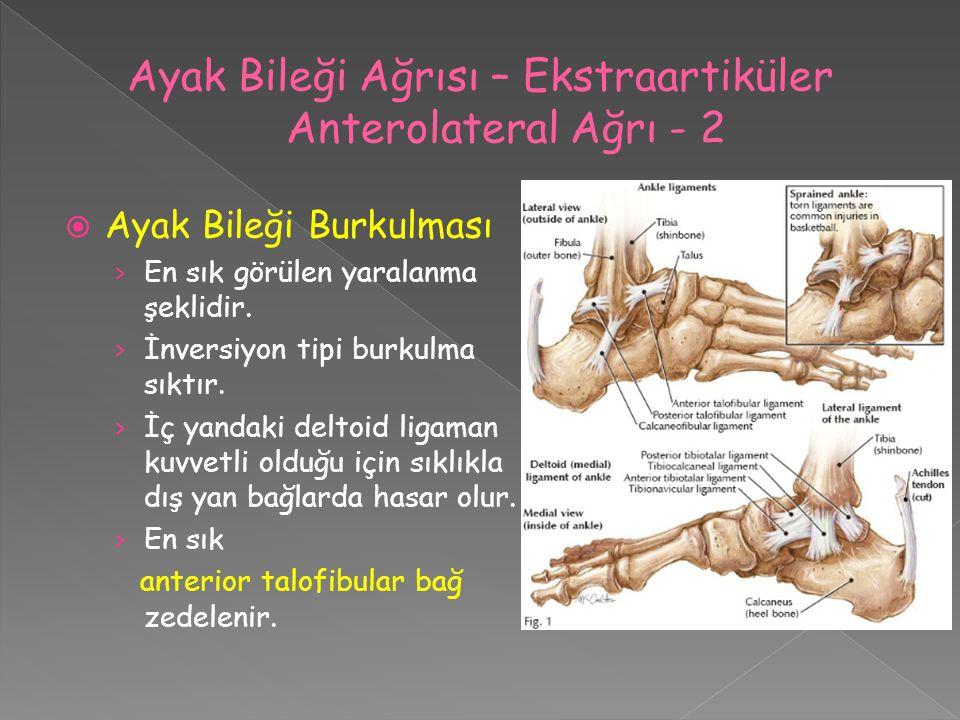  Ayak Bileği Burkulması › En sık görülen yaralanma şeklidir. › İnversiyon tipi burkulma sıktır. › İç yandaki deltoid ligaman kuvvetli olduğu için sık