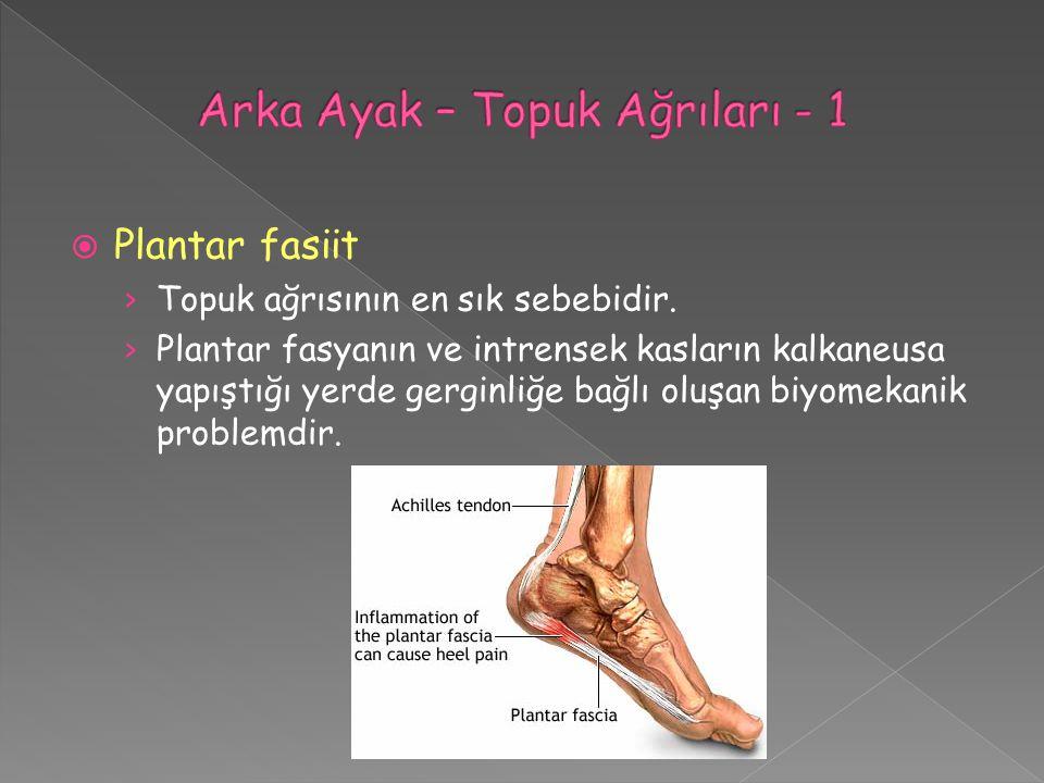  Plantar fasiit › Topuk ağrısının en sık sebebidir. › Plantar fasyanın ve intrensek kasların kalkaneusa yapıştığı yerde gerginliğe bağlı oluşan biyom